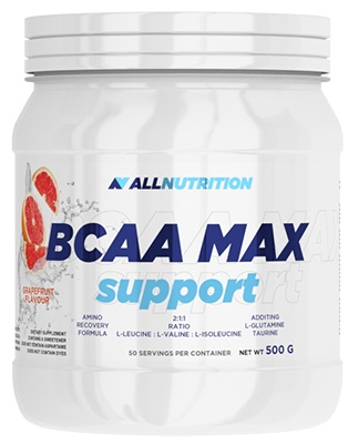 BCAA Max Support, Orange - 500g versandkostenfrei/portofrei bestellen/kaufen