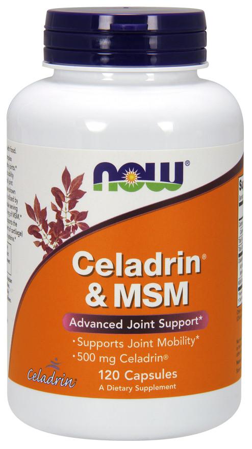 Celadrin & MSM, 500mg - 120 capsules versandkostenfrei/portofrei bestellen/kaufen