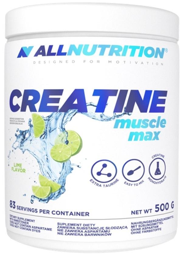 Creatine Muscle Max, Strawberry - 500g versandkostenfrei/portofrei bestellen/kaufen